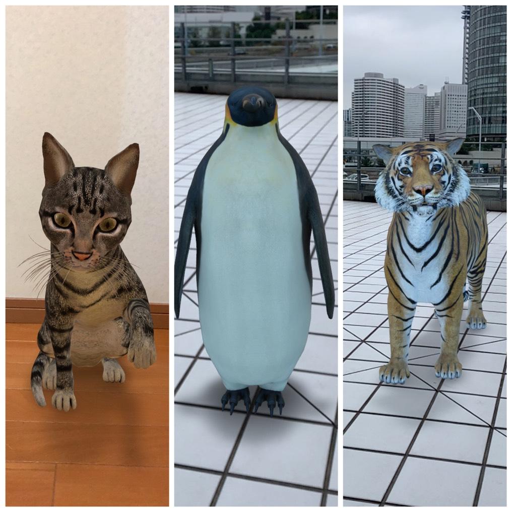 GoogleでARのネコ(猫)・ペンギン・トラが見られる!?Google検索のAR機能をご紹介!!